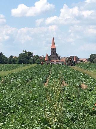 Wehrkirche Krafshof im Knoblauchsland.