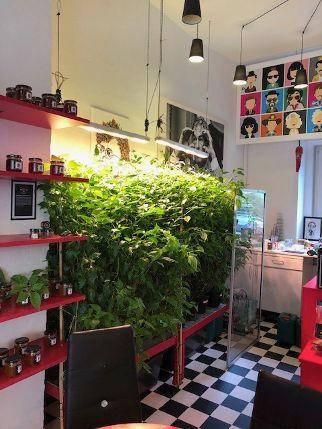 Chili Lounge in Nürnberg, Stadtteil Gostenhof.